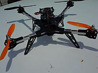 Name: SpiderQuad 030.jpg