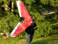 Name: 5 foot wing.jpg