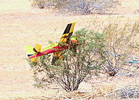 Name: IMG_9356.jpg