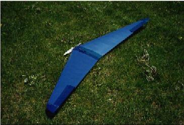 Name: plane7.jpg Views: 415 Size: 22.4 KB Description: Klingberg Wing