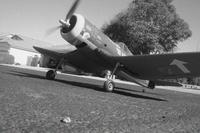 Name: DSC02443.jpg