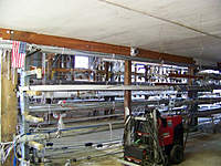 Name: GLYS 11.jpg