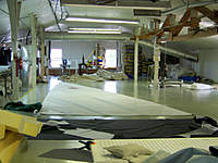 Name: Dorsal 4.jpg