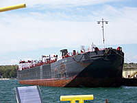 Name: BSC 16.jpg
