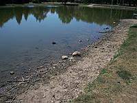 Name: SP 7 8 12 1.jpg
