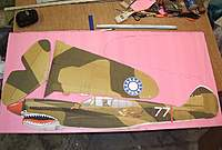 Name: P-40 Warhawk 7-6-10 - New- (0).jpg