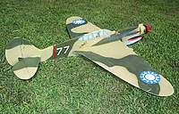 Name: P-40 Warhawk 7-6-10 - New- (23).jpg