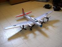Name: 100_0310.jpg