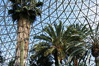 Name: DSCF5139.jpg