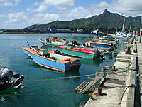 Name: DSCF3131.jpg