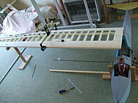 Name: DSCF8556.jpg