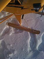 Name: Cub on Skis3.jpg