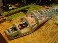 Name: A-Penguin-X (6).jpg