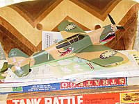 Name: Added Decals to P-40.jpg