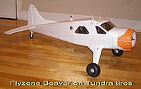 Name: Tundra-Beaver.JPG