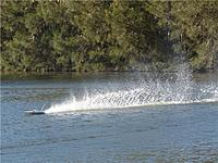 Name: m_Arowana 025.jpg
