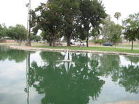 Name: Sailing on Glass.jpg