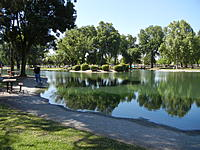 Name: Pond is full.jpg