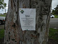 Name: Notice posted at our pond.jpg