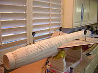 Name: DSCN6234.jpg