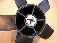 Name: DSCN6766.jpg