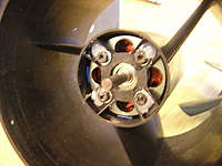 Name: DSCN6925.jpg