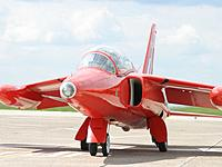 Name: Gnat-RA1.jpg