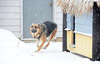 Name: DSC_3720.jpg