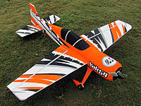 Name: scaleyakswtopright.jpg