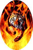 Name: Tiger Flames.jpg Views: 34 Size: 69.7 KB Description: the original