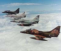 Name: rnzaf_4_colour_t_birds.jpg