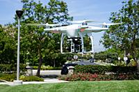 Name: DSC00680s.jpg