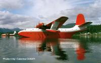 Name: tmsl2.jpg
