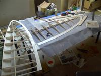 Name: Super Scorpion wing panels.jpg