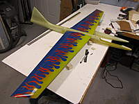 Name: rodent 009.jpg