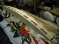 Name: P1010061.jpg