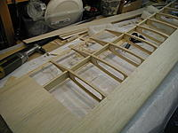 Name: P1010112.jpg