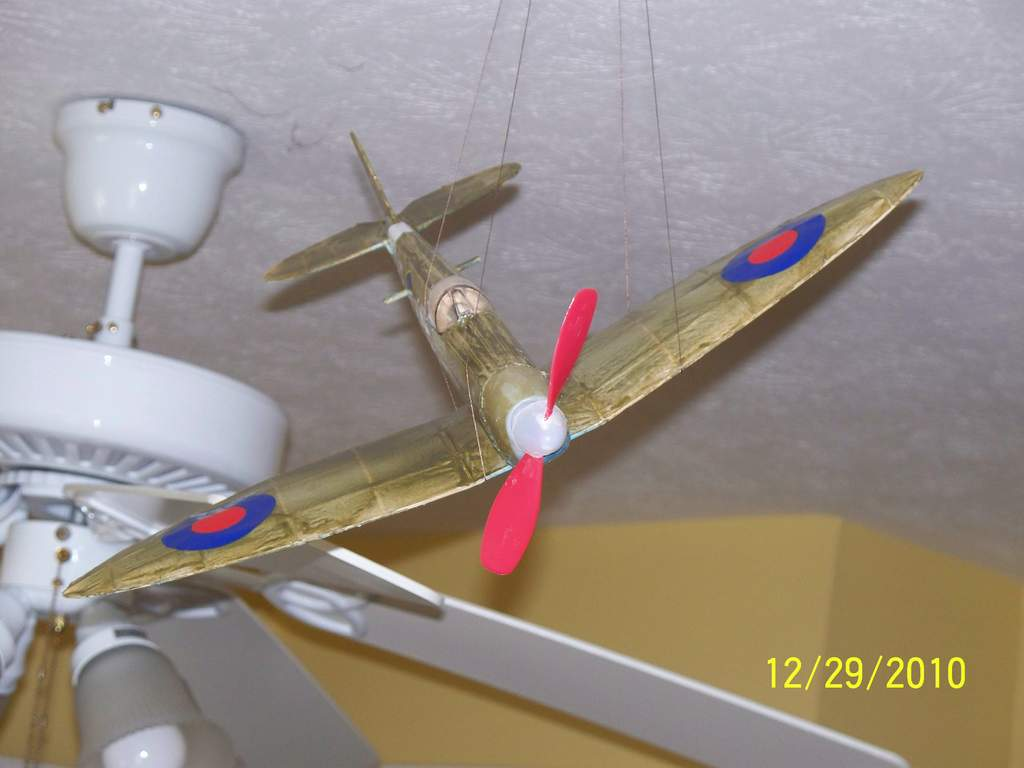 Name: 100_1807.jpg