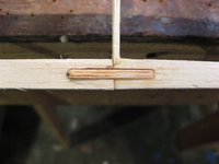 Name: Copy of IMG_0166sm.jpg