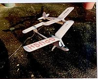 Name: Kitten&J60.jpg