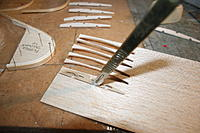 Name: IMG_2881.jpg