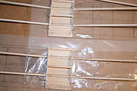 Name: IMG_2884.jpg