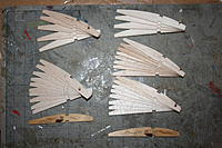 Name: TTRIBS.jpg