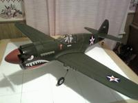 Name: P-40 Complete.jpg