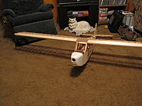 Name: IMG_0196.jpg