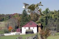 Name: Spitfire Over the Farm.jpg
