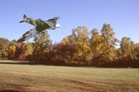 Name: Spitfire In Autumn.jpg