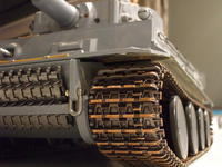 Name: Tiger1 030.jpg