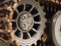 Name: Tiger1 029.jpg