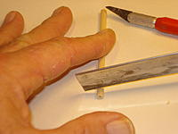 Name: DSC05647.jpg